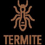 Diagnostic-Termites-etat-parasitaires-bois