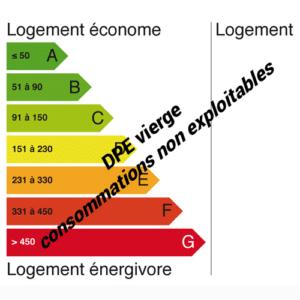 étiquette diagnostic performance énergétique vierge